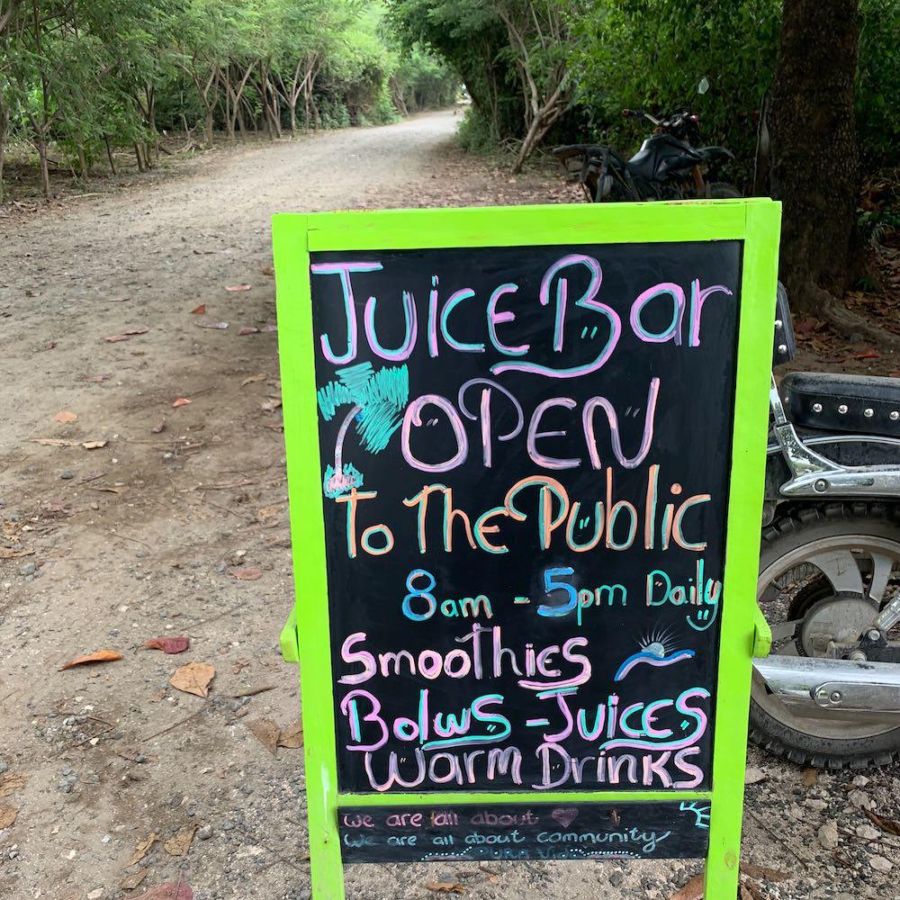 Juice Bar at the Guilded Iguana in Playa Guiones