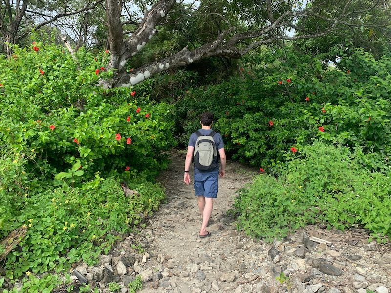 Charles Alexander Kosydar walking through a path in the jungle of Costa Rica