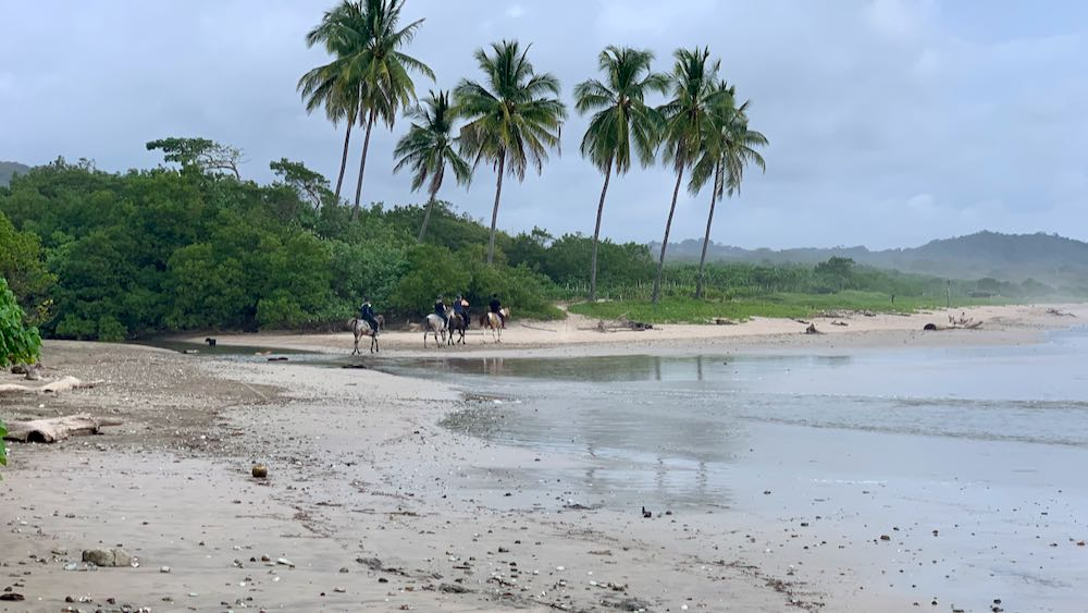 Horses crossing the stream on the north end of Playa Guiones